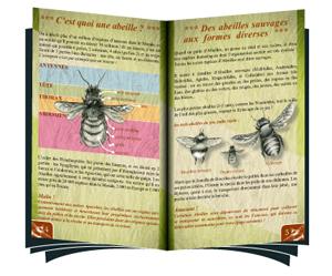 Pollen-livret-ouvert