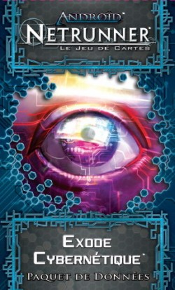 android-netrunner----3300-1384848726-6695