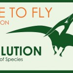 evolutiontime-to-fly-15-1349000200-5631