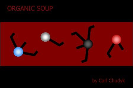 organic-soup-49-1287305839-3634