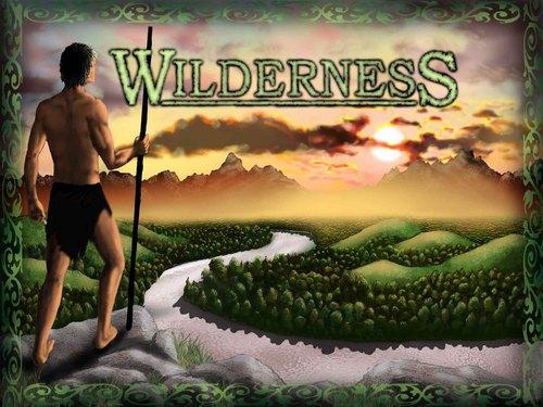 wilderness-49-1316729494-4610