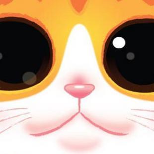 Cat Tower, on est vendredi, c'est le jour du poisson !