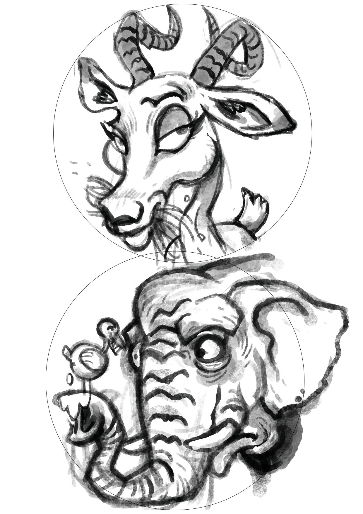 gazelle & elephant