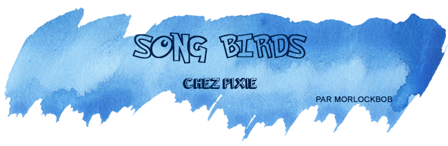 retour-salon-song-birds