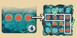 score-reef