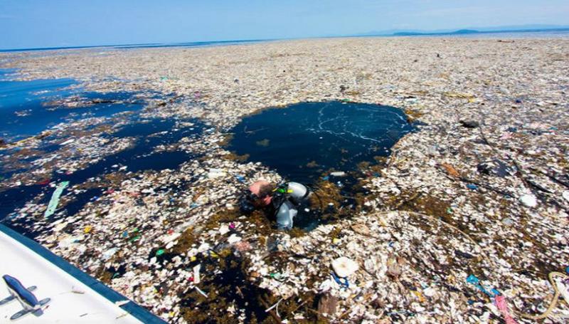 plastique-dechets-mer-pacifique