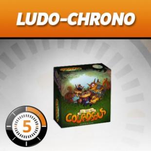 Ludochrono – Le bois des Couadsous