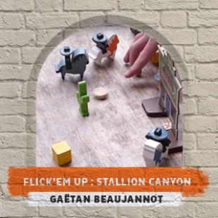 Orléans joue 2015 – Flick'em up : stallion canyon – Gaëtan Beaujannot