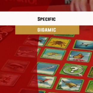 Cannes 2016 – jeu Specific – Gigamic – VF