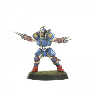 blood-bowl-2016-jeu-figurine