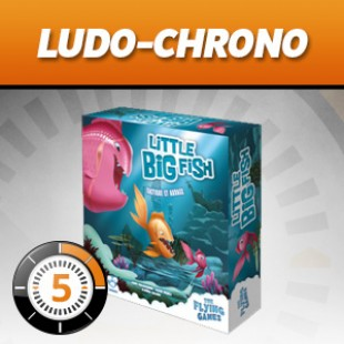 LUDOCHRONO – Little Big Fish