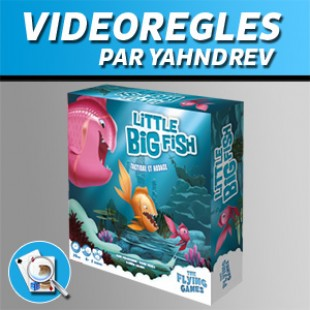 Vidéorègles – Little Big Fish