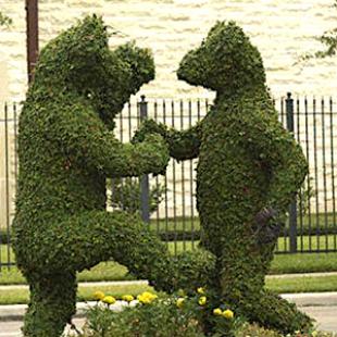 Topiary – Quand les jardiniers se font des coups bas