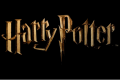 Harry Potter Miniatures Adventure Game ne passera finalement pas sur Kickstarter.
