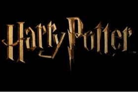 Harry Potter Miniatures Adventure Game ne passera finalement pas sur Kickstarter.