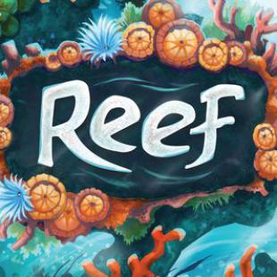 Reef, le tuba de l'été