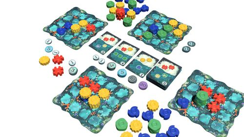 reef materiel