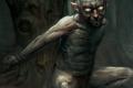 Le Seigneur des Anneaux JCE sur Steam : Mon Précieux ?