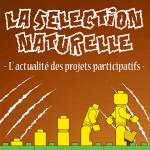 Participatif, la sélection naturelle du lundi 15 octobre 2018