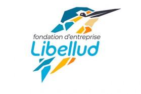 Libellud lance sa fondation d'entreprise